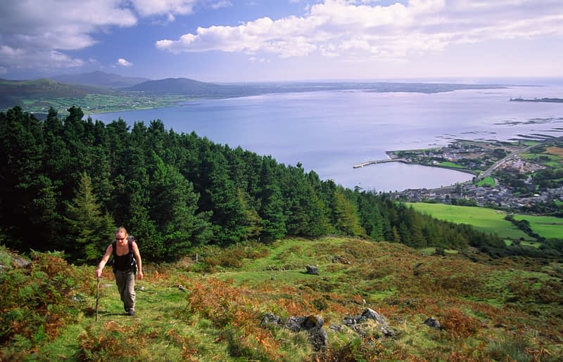 Walker climbing Slieve Foye above Carlingford, Co Louth, Ireland.
