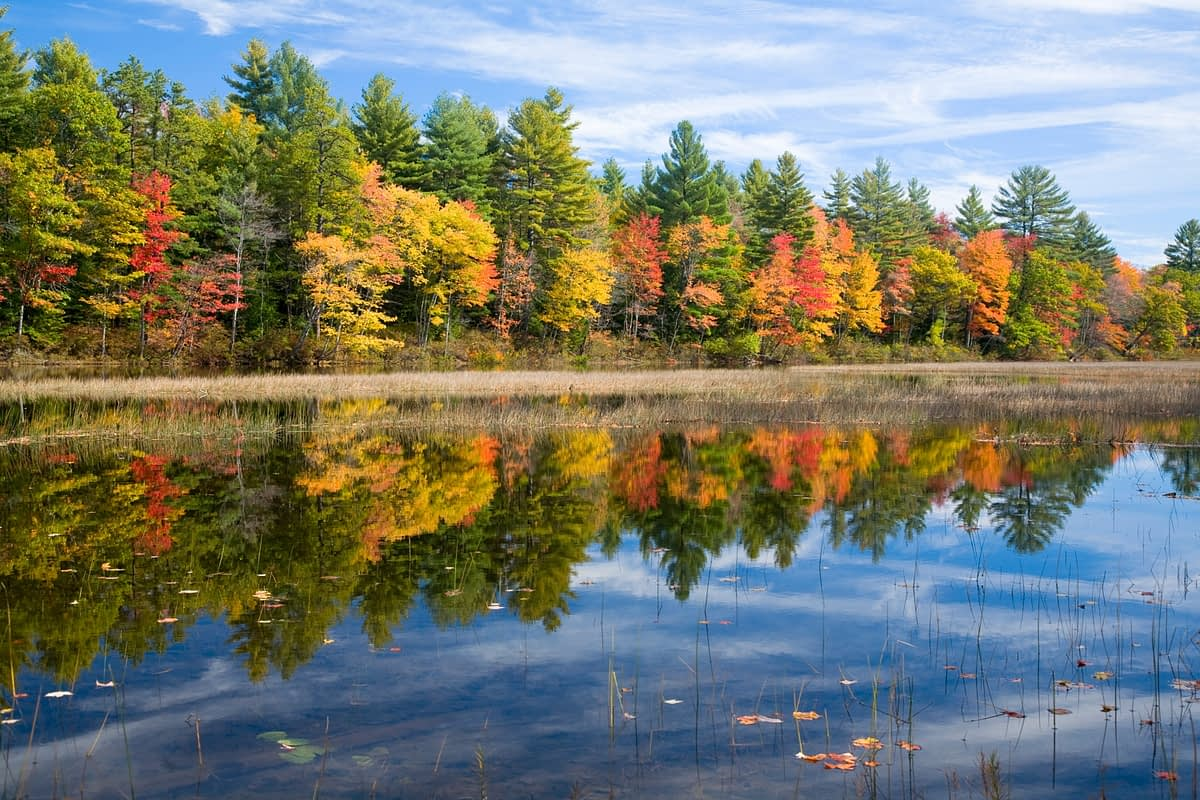 Fall reflections on the Ossipee River, Maine, New England, USA.