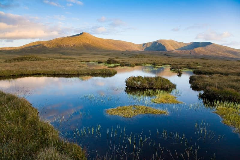 Bog pool beneath the Nephin Beg Mountains, Ballycroy National Park, Co Mayo, Ireland.