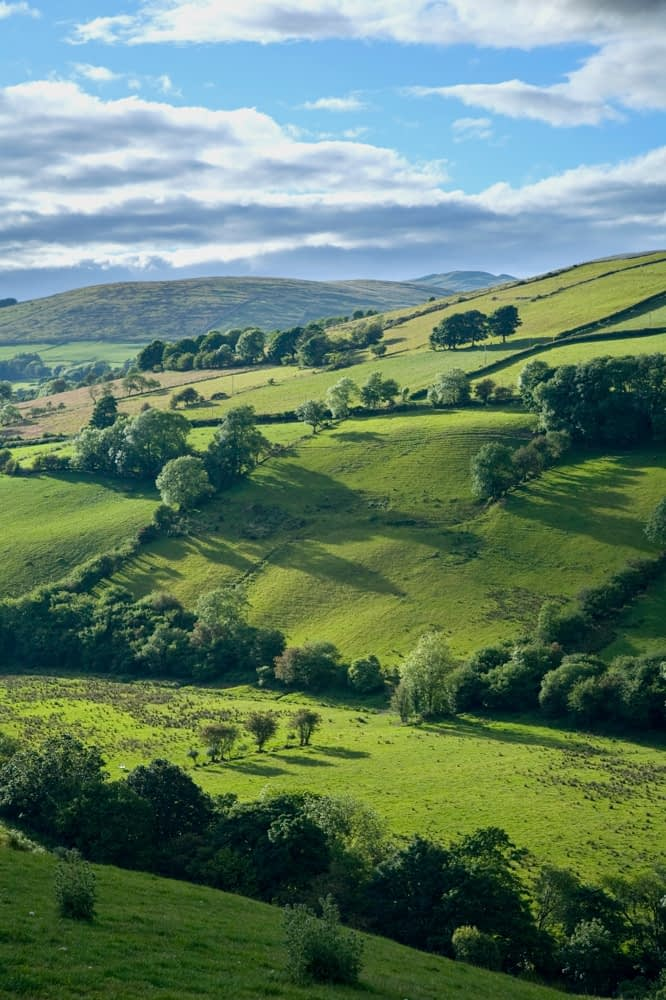 Summer fields in the Glenelly Valley, Sperrin Mountains, Co Tyrone, Northern Ireland.