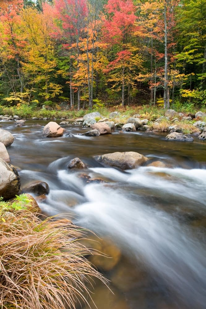 Fall colours on the Ellis River, Jackson, White Mountains, New Hampshire, USA.