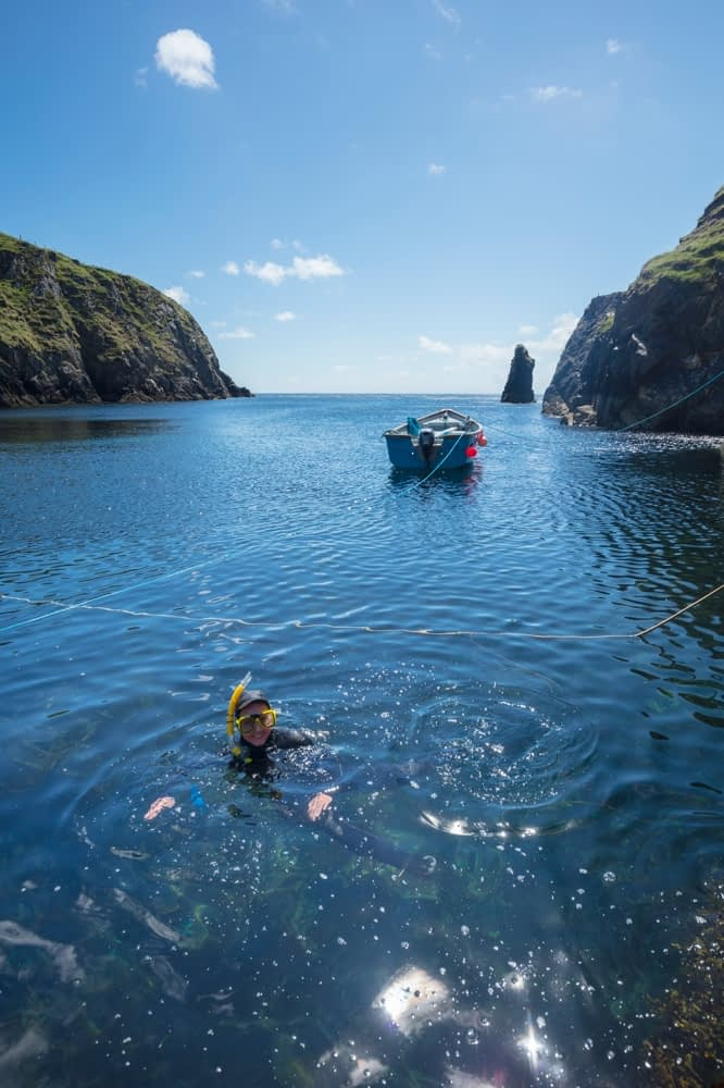 Snorkeling in Malin Beg Harbour, County Donegal, Ireland.