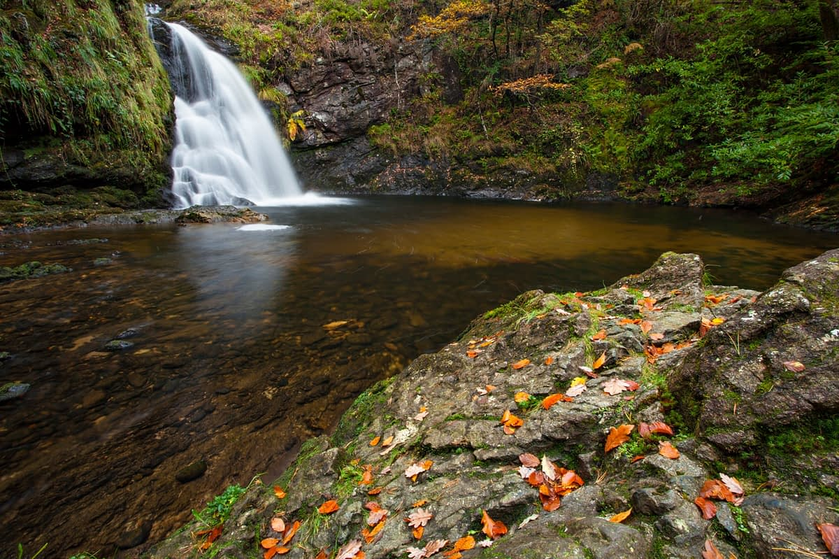 Autumn at Tourmakeady Falls, Tourmakeady Woods, County Mayo, Ireland.