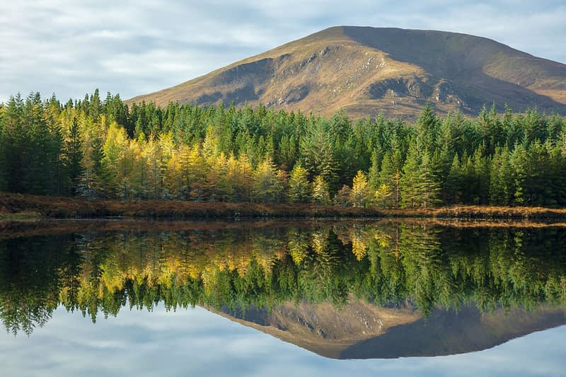 Autumn reflection of Nephin Beg Mountain in Lough na Brock. Wild Nephin Wilderness Area, Ballycroy National Park, County Mayo, Ireland.