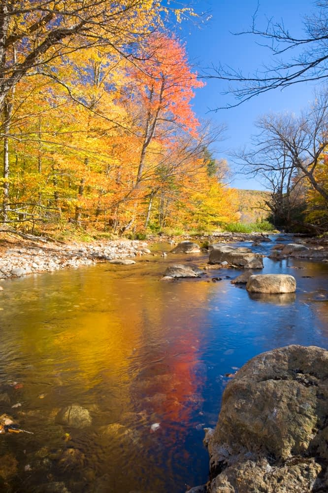 Fall colours on the Eliis River, White Mountains, New Hampshire, USA.