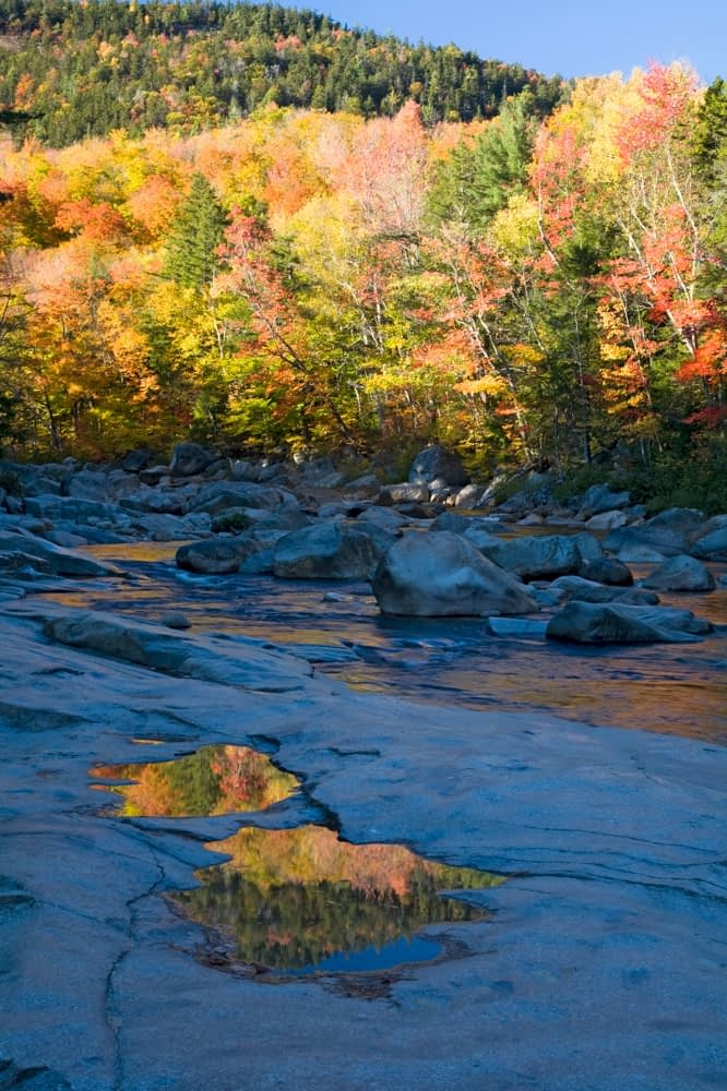 Fall colours along Swift River, White Mountains, New Hampshire, USA.