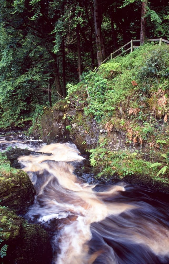 The Glenariff River, Glenariff Forest Park, Co Antrim, Northern Ireland.