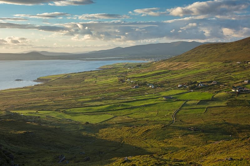 Green fields beside Ballinskelligs Bay, County Kerry, Ireland.