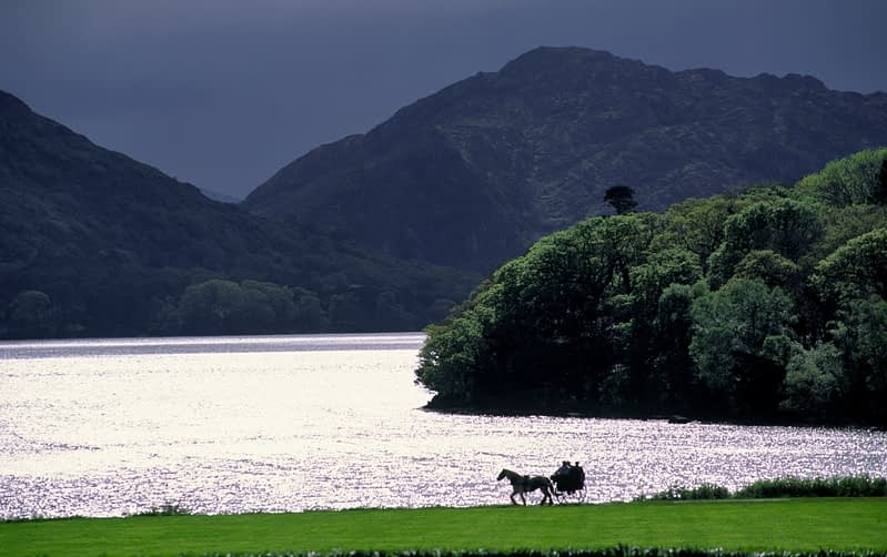 Jaunting car and Muckross Lake, Killarney National Park, Co Kerry, Ireland.