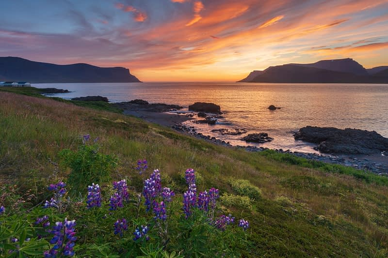 Coastal sunset over Dyrafjordur, from near Pingeyri. Westfjords, Iceland.