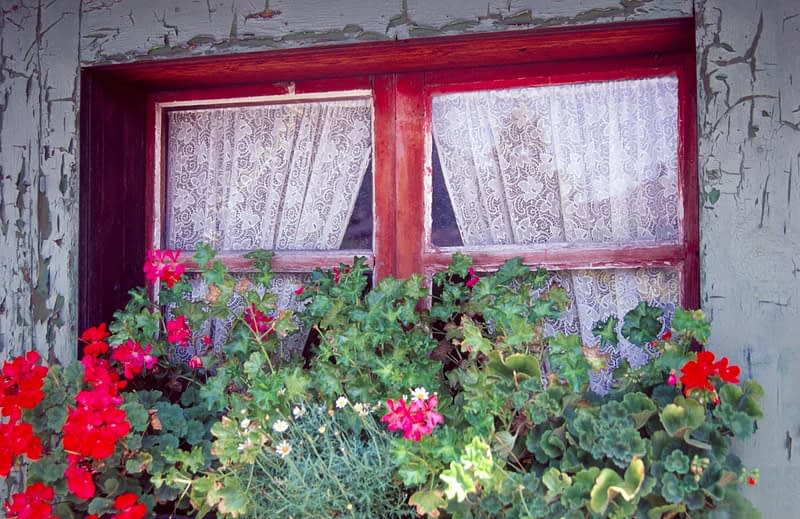 Window of an alpine chalet, Chamonix Valley, French Alps, France.