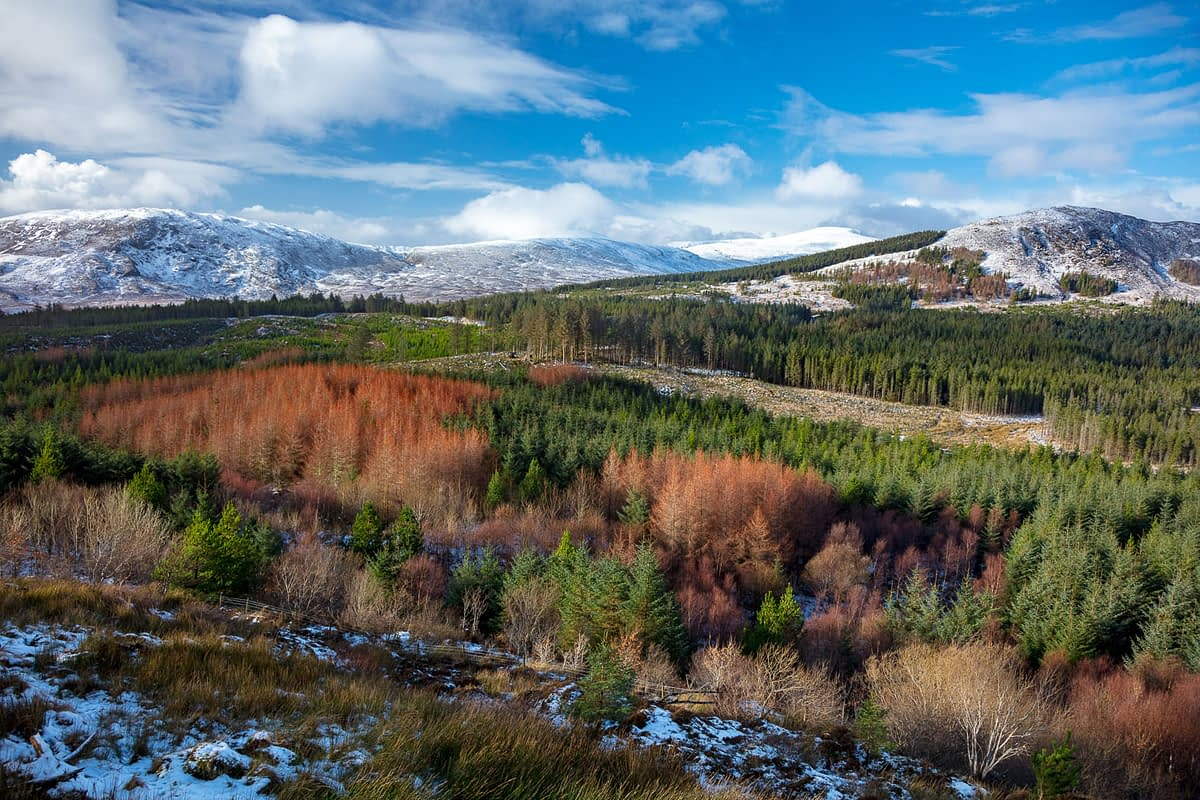 Winter view over the Wild Nephin Wilderness Area from Letterkeen. Ballycroy National Park, County Mayo, Ireland.