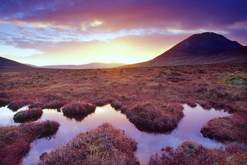 Evening bog pool beneath Errigal Mountain, Co Donegal, Ireland.