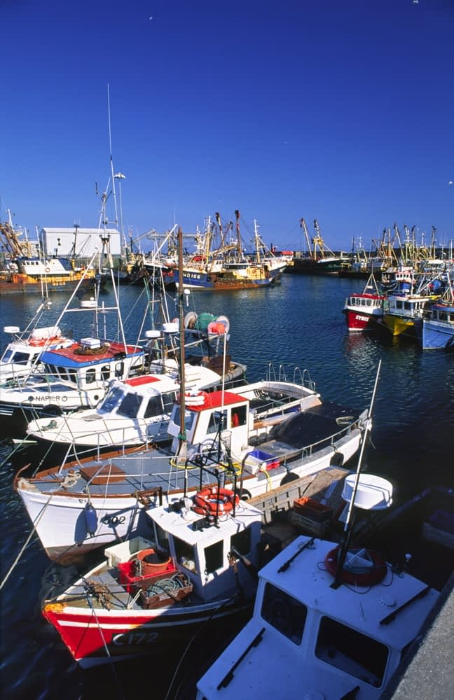 Fishing boats in Kilmore Quay harbour, Co Wexford, Ireland.