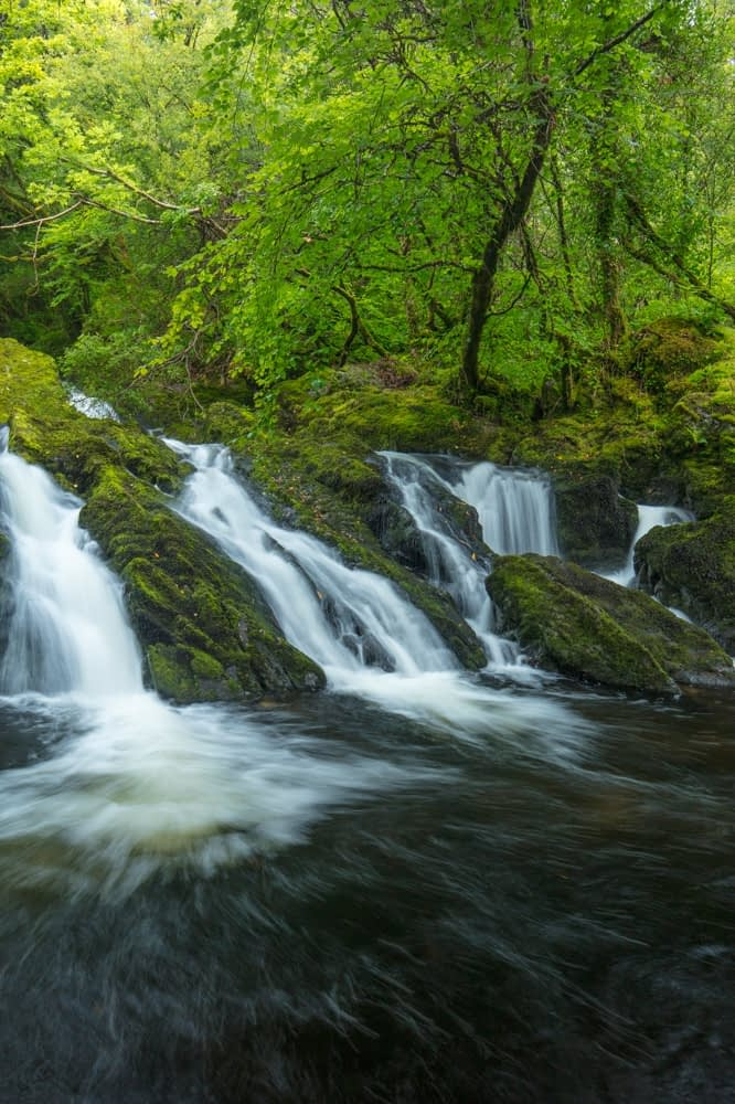 Waterfall on the Canrooska River, Glengarriff Nature Reserve, Glengarriff, County Cork, Ireland.