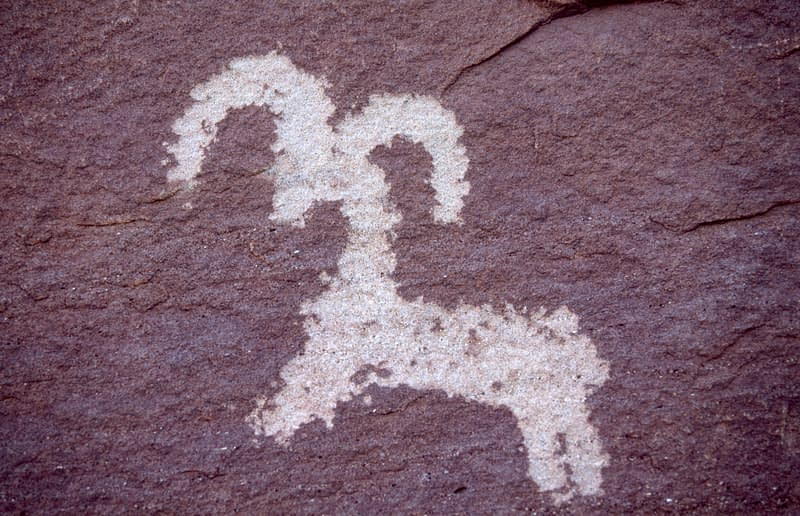 Petroglyph of bighorn sheep left by Ute Indians, Arches National Park, Utah, USA.