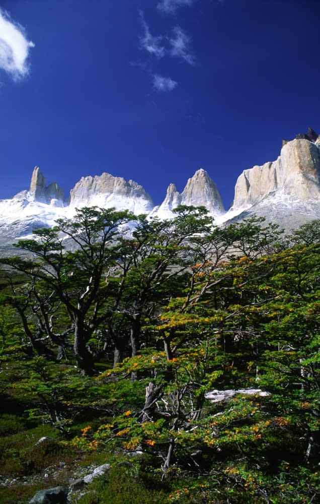 The French Valley, Torres del Paine National Park, Patagonia, Chile.