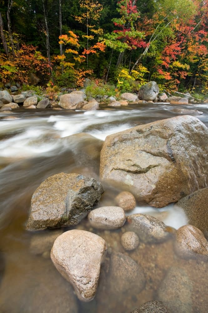 Swift River in fall, White Mountains, New Hampshire, USA.