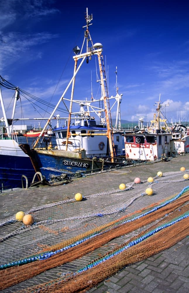 Fishing nets drying in Dingle Harbour, Co Kerry, Ireland.