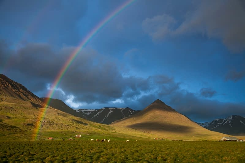 Evening rainbow over the Heradsvotn valley, Varmahlid, Skagafordur, Nordhurland Vestra, Iceland.