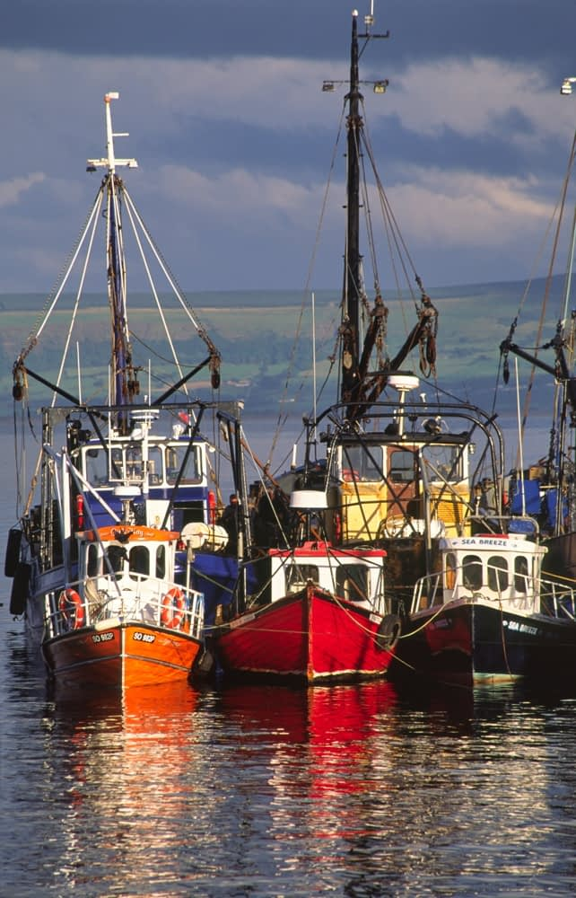Fishing trawlers at Moville harbour, Inishowen, Co Donegal, Ireland.
