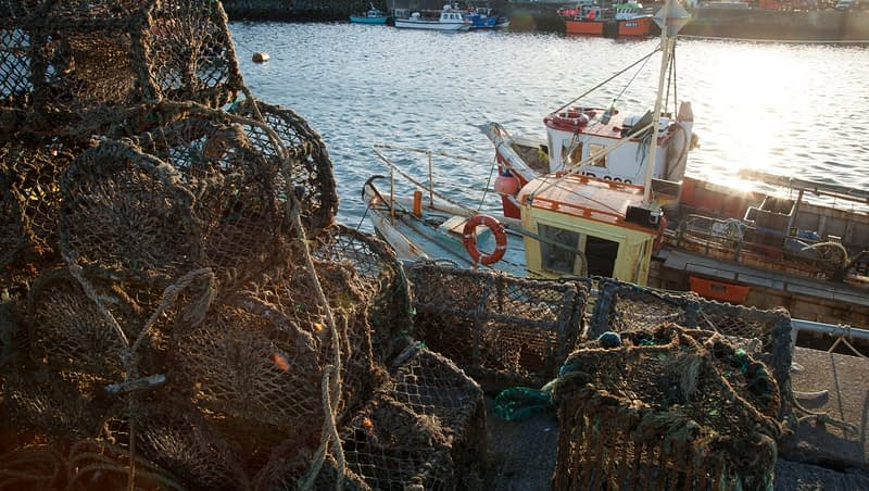 Fishing boats and lobster pots in Howth harbour, County Dublin, Ireland.