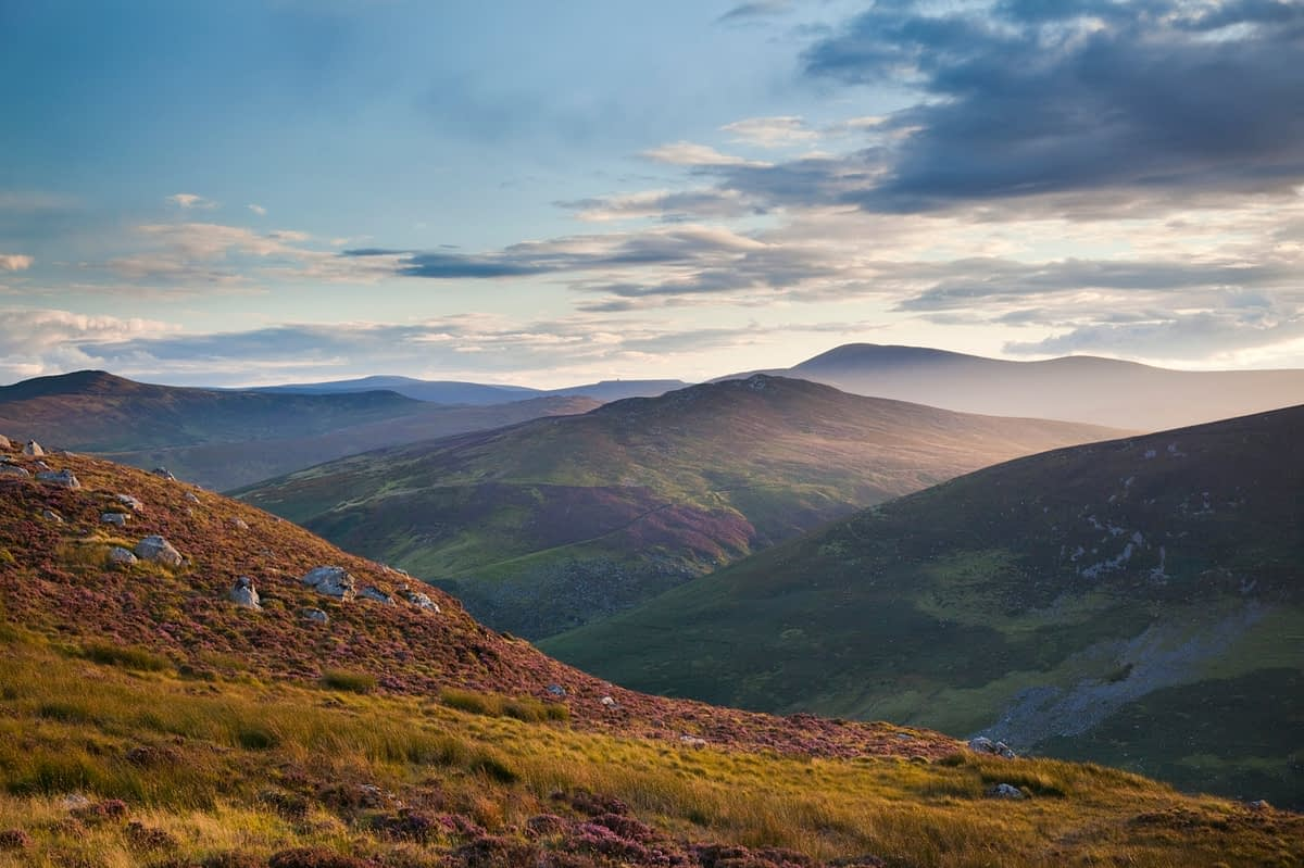 Evening in the Wicklow Mountains, Co Wicklow, Ireland.