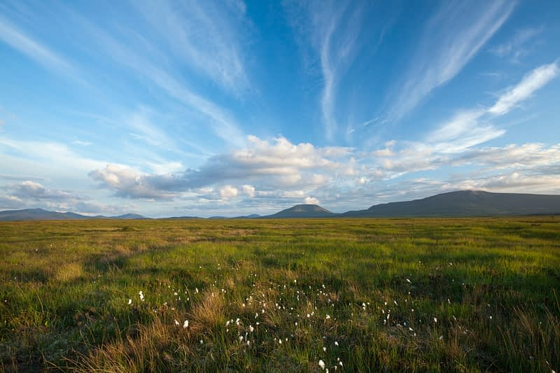 Open bogland beneath the Nephin Beg Mountains, Ballycroy National Park, County Mayo, Ireland.