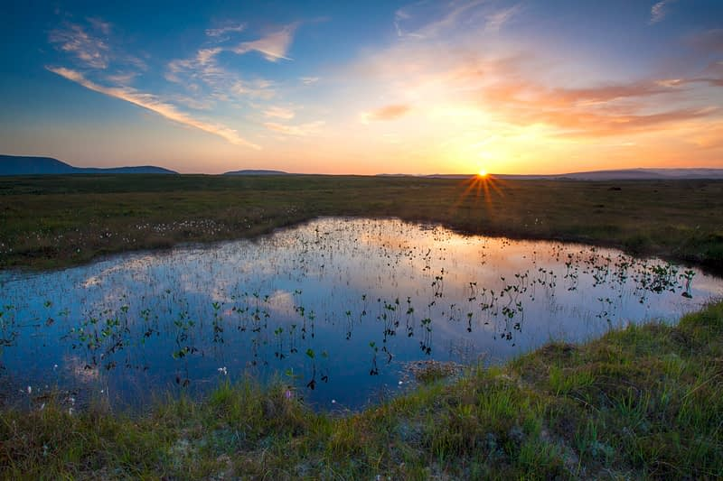 Bog pool sunset beneath the Nephin Beg Mountains, Ballycroy National Park, County Mayo, Ireland.