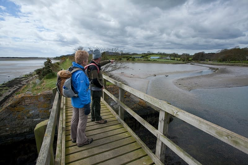 Walkers on a bridge on the Dundrum Coastal Path, County Down, Northern Ireland.