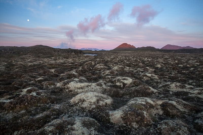 Dawn moon over moss-covered lava, Krafla volcano, Myvatn, Nordhurland Eystra, Iceland.