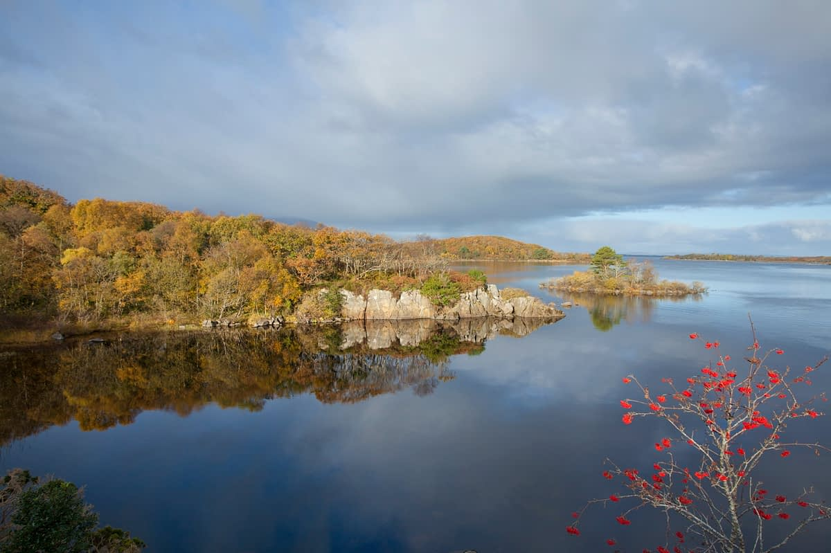 Autumn colours on the shore of Lough Conn, Co Mayo, Ireland.