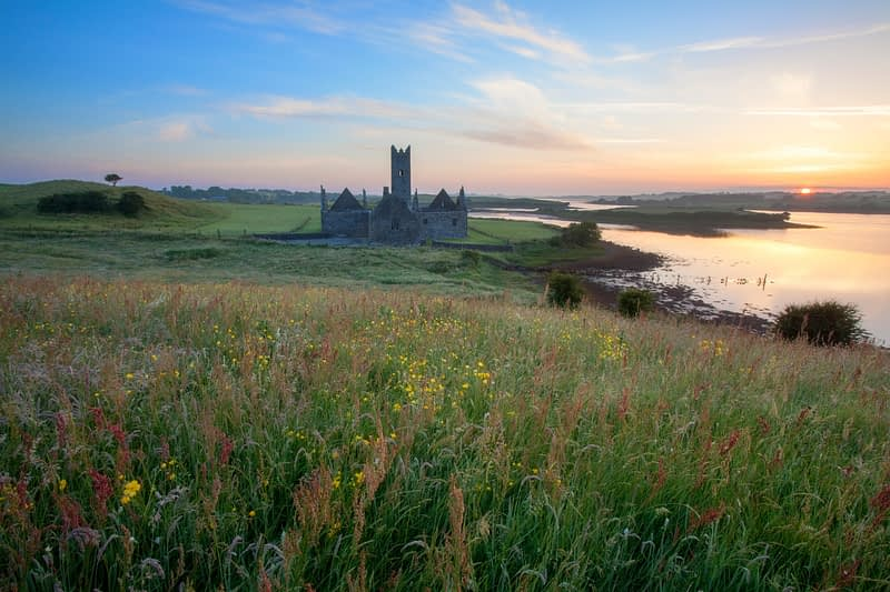 Summer dawn at Rosserk Abbey, County Mayo, Ireland.