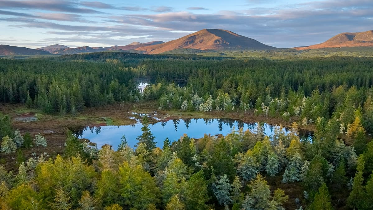 Aerial view over Wild Nephin Wilderness Area to the Nephin Beg Mountains. Ballycroy National Park, County Mayo, Ireland.