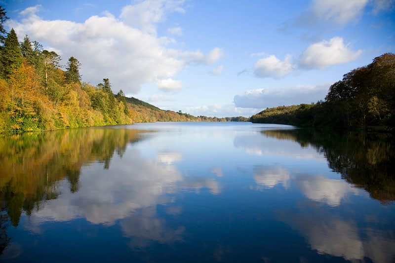 Autumn reflections in Castlewellan Lake, Castlewellan Forest Park, Co Down, Northern Ireland.