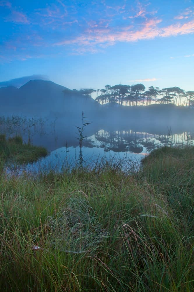 Misty morning at Derryclare Lough, Connemara, Co Galway, Ireland.