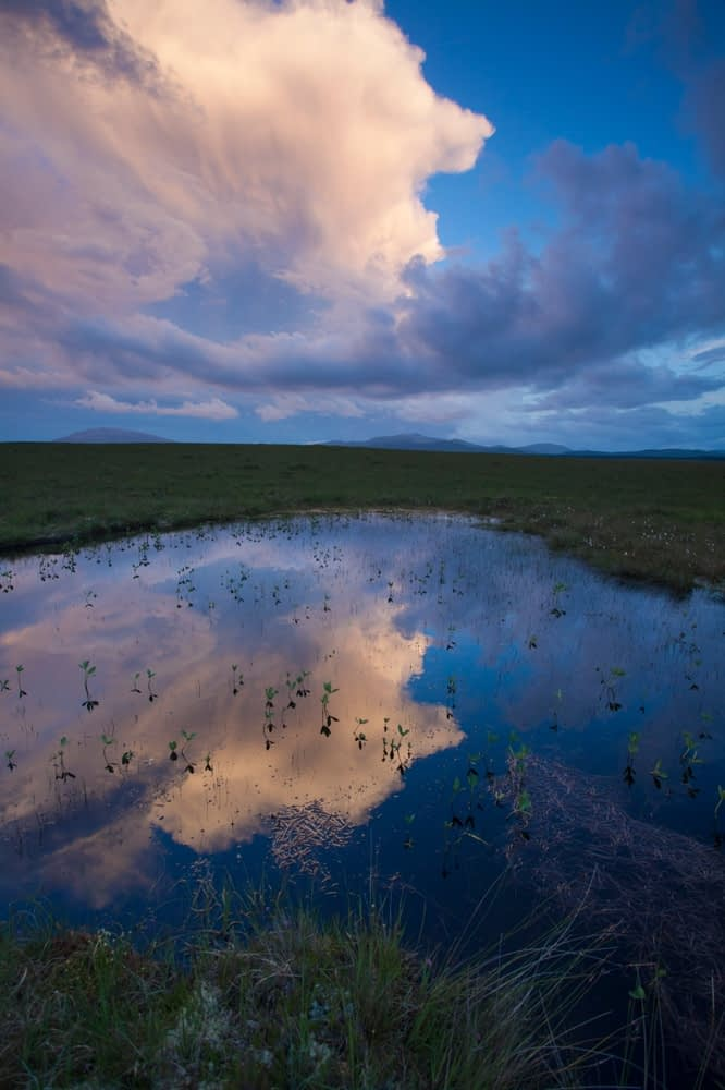 Evening bog pool reflections, Ballycroy National Park, County Mayo, Ireland.