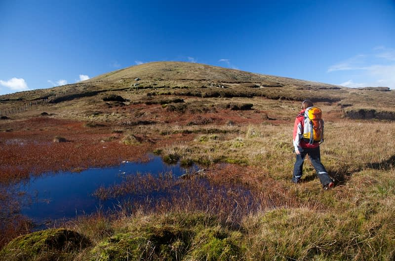Walker on the ascent to Sawel Mountain, Sperrin Mountains, Co Tyrone, Northern Ireland.