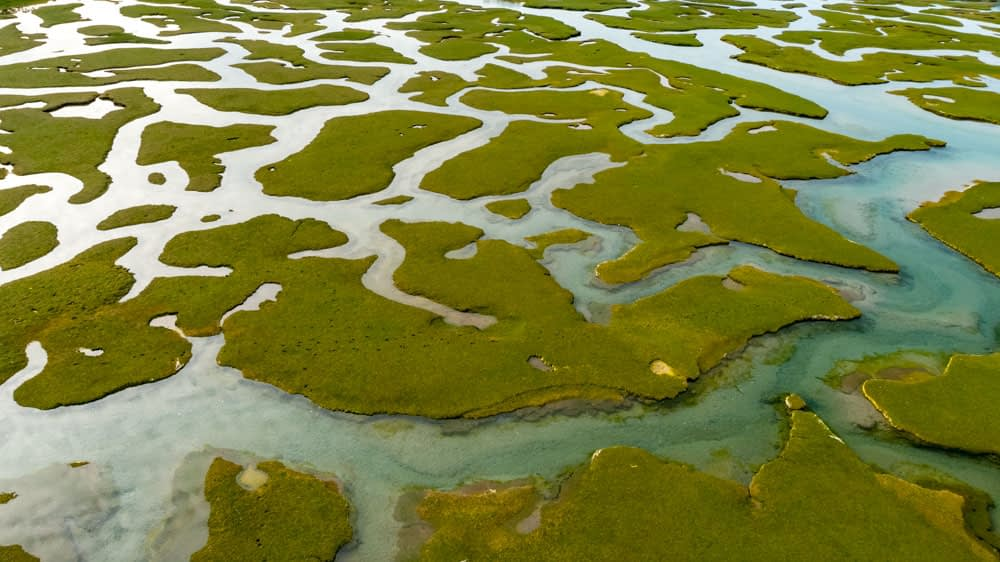 Aerial view of the tidal saltmarsh at Mulranny, County Mayo, Ireland.