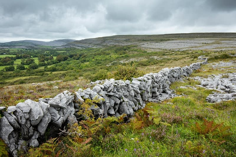 Stone wall in The Burren, County Clare, Ireland.