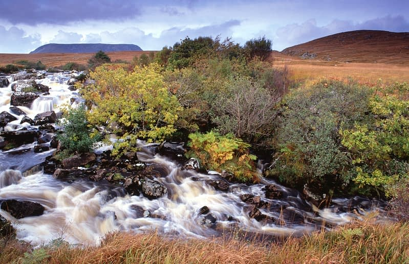 Autumn near the Calabber River, Co Donegal, Ireland.