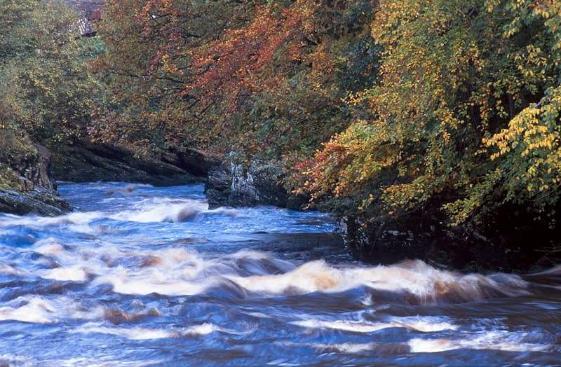 Autumn along the River Roe, Roe Valley Country Park, Co Derry, Northern Ireland.