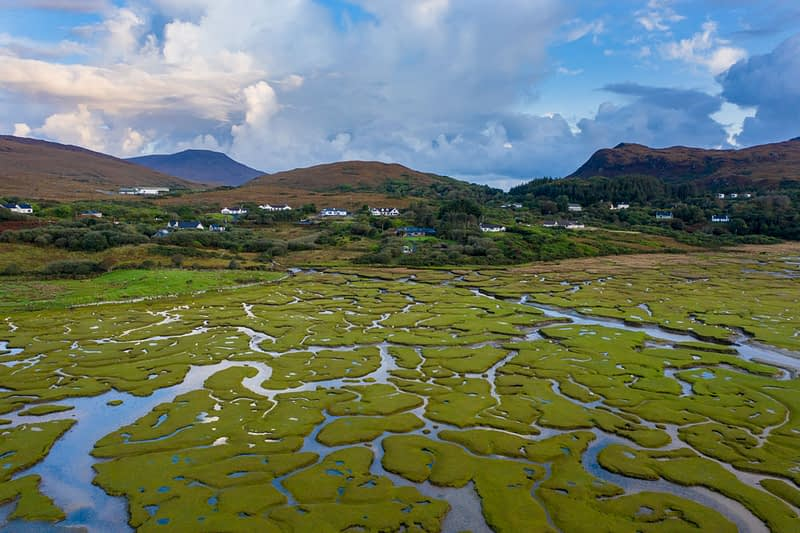 Aerial view of the tidal saltmarsh in front of Mulranny village, County Mayo, Ireland.