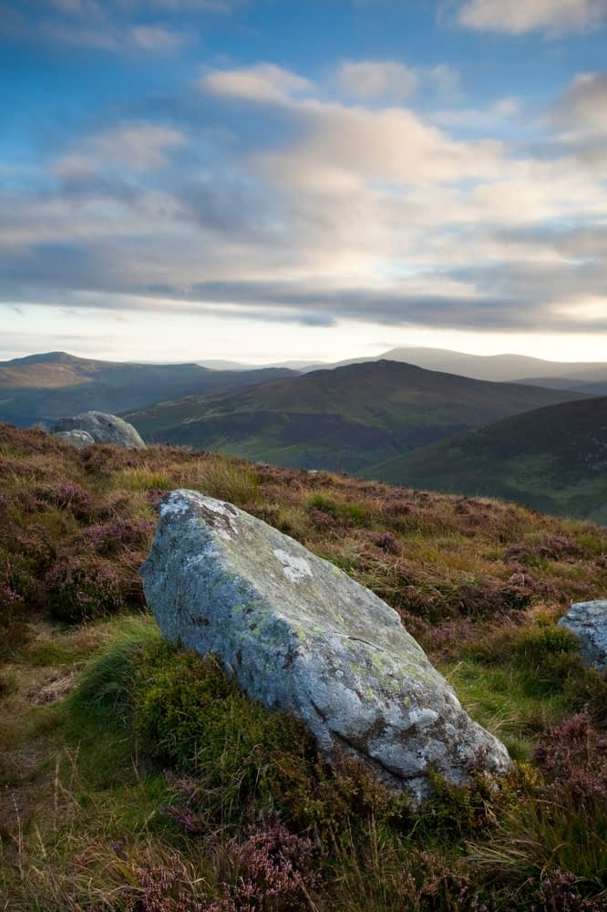 Scattered boulders in the Wicklow Mountains, Co Wicklow, Ireland.