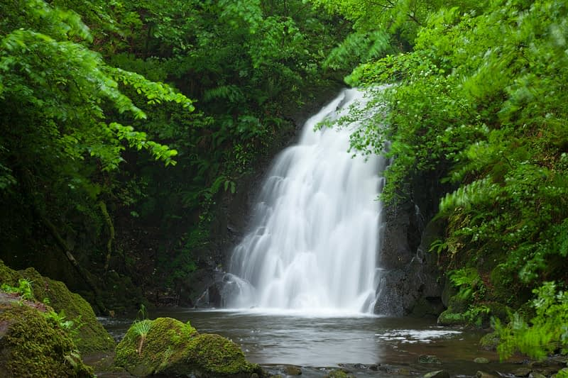 Glenoe Waterfall, County Antrim, Northern Ireland.