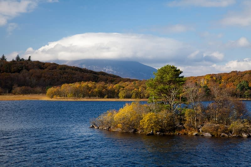 Autumn colours beneath Nephin mountain, Lough Conn, Co Mayo, Ireland.