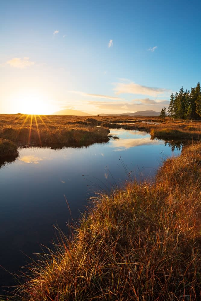 Sunset over a bog pool in Wild Nephin Wilderness Area. Ballycroy National Park, County Mayo, Ireland.