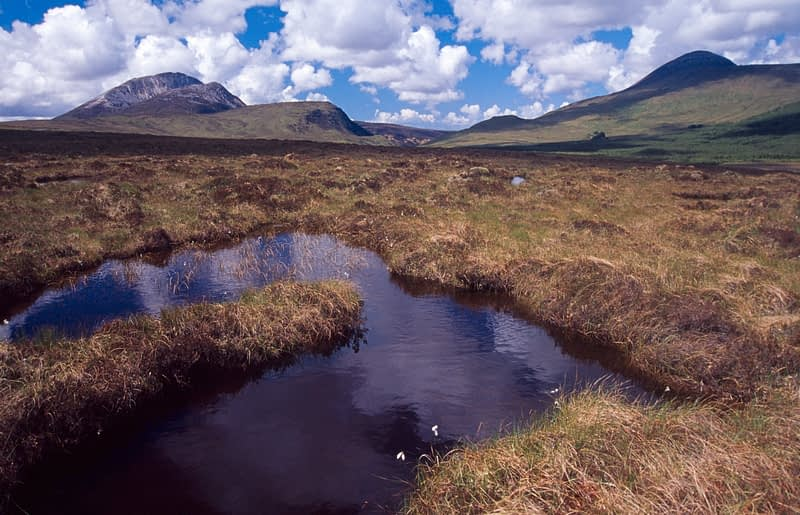 Bog pool near Errigal Mountain, Co Donegal, Ireland.