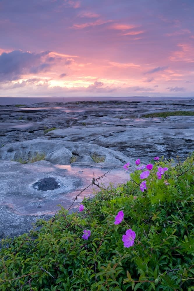 Sunset over the limestone pavement of The Burren, Co Clare, Ireland.