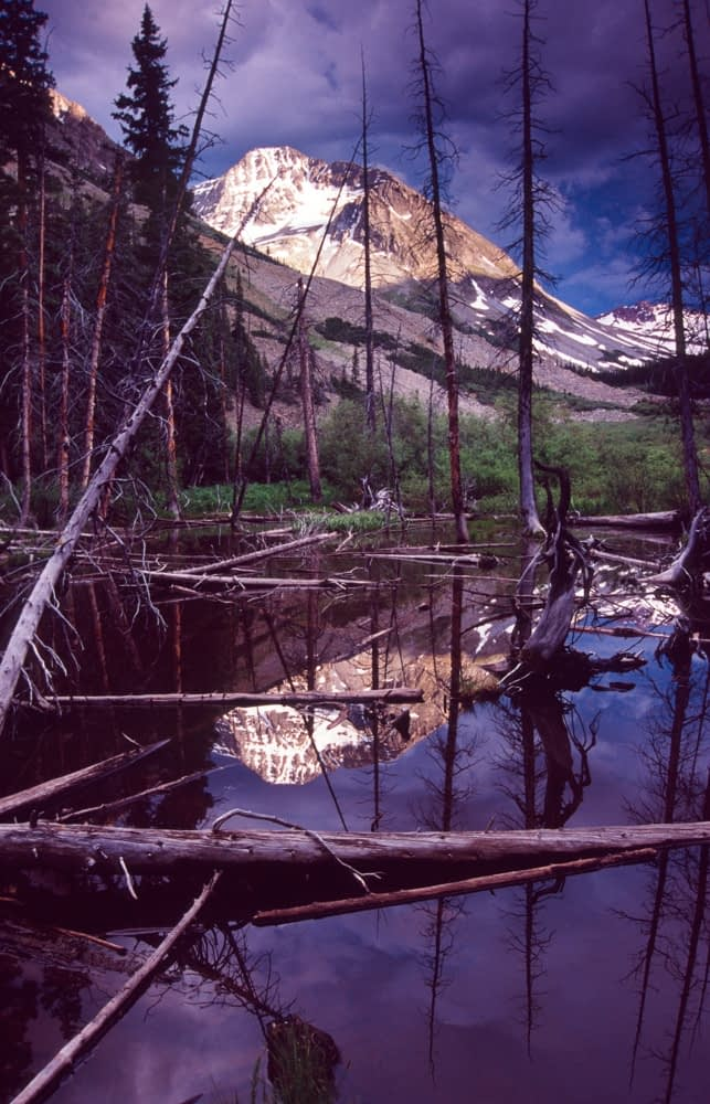 Reflection of Castle Peak, Maroon Bells-Snowmass Wilderness, Colorado, USA.